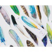 marcador plumas